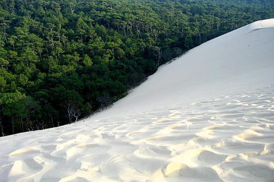Bassin d'Arcachon : Dune du Pilat