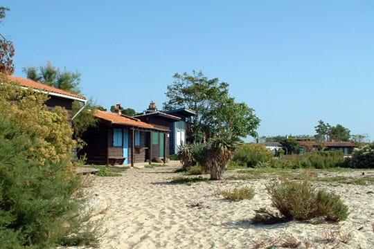 Bassin d'Arcachon : L'Ile aux Oiseaux