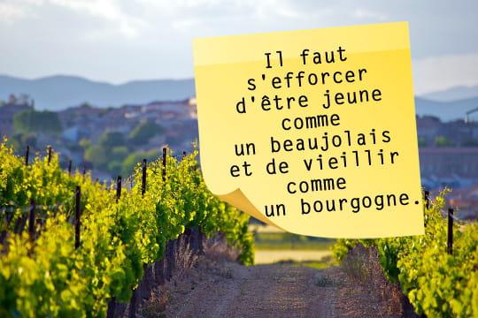 le vin français vu par robert sabatier