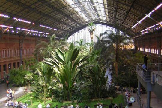 Gare d 39 atocha for Jardin atocha