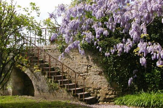 le parc du château offre une promenade agréable entre fleurs et pierres