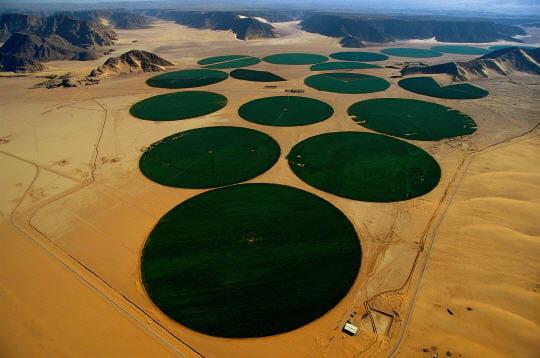 desert-wadi-rum-229165