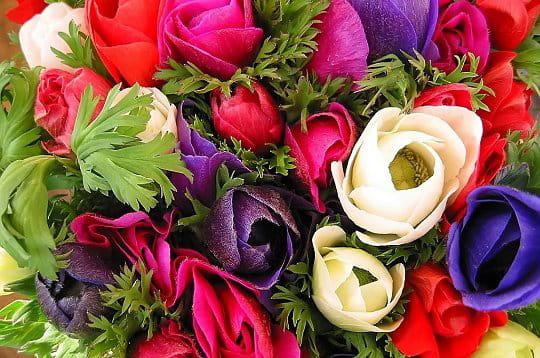les bouquets les bouquets de fleurs de la galerie photo linternaute. Black Bedroom Furniture Sets. Home Design Ideas