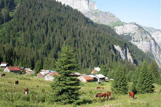 Sixt fer cheval sixt fer cheval linternaute - Office de tourisme sixt fer a cheval ...