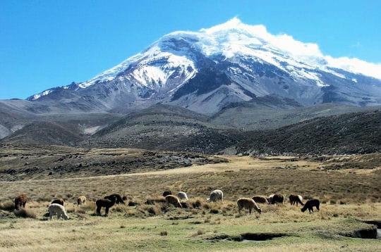 Projet à long terme : World Tour Equateur-249069