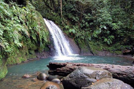 Cascade des Ecrevisses en Guadeloupe : Les chutes d'eau ...
