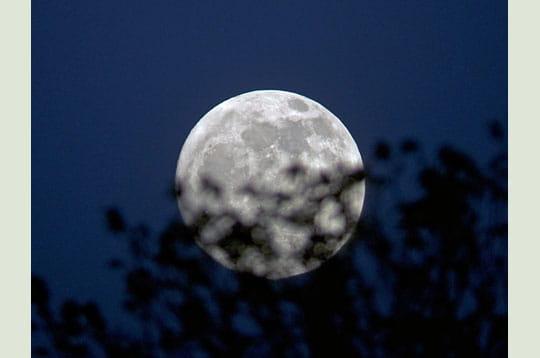 'la pleine lune du mois de mai porte le nom poétique de 'lune des fleurs'. ici,