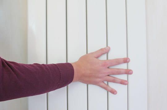 Beaut blog special chauffage 25 poeles et cheminees installer un poele a - Quelle radiateur choisir ...