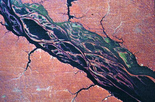 Les Varzéas d'Amazonie