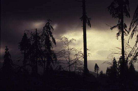 http://www.linternaute.com/nature-animaux/geologie/photo/les-vosges/image/jour-nuit-286298.jpg
