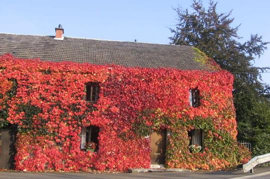 Oh la belle rouge maisons en vrac linternaute for Piscine xhoris