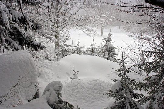 La croisée des chemins Neige-290474