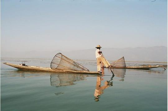 Rameur birman