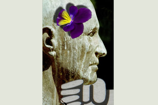 pensee-unique-302629