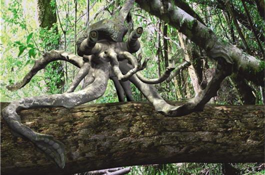 La pieuvre-singe