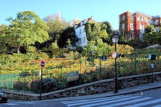 les vignes et le musée de montmartre (museedemontmartre.fr ou 01 49 25 89 39),