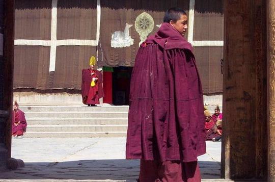 escapade au tibet un portrait simple et d licat de la chine linternaute. Black Bedroom Furniture Sets. Home Design Ideas