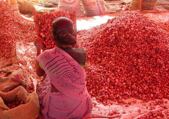 madurai-cite-fertile-316251 dans VOYAGE EN INDE