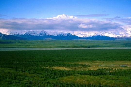 tout au nord de l'alaska, à prudhoe bay, une poignée de courageux vivent depuis