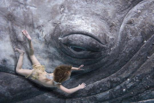 http://www.linternaute.com/mer-voile/plongee/photo/le-festival-mondial-de-l-image-sous-marine-2008/image/bebe-nageur-baleine-331399.jpg