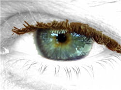 la forme de l'iris est propre à chaque individu comme les empreintes digitales.