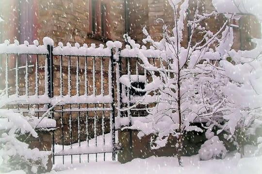 http://www.linternaute.com/photo_numerique/galerie-photo/photo/blanc-comme-neige-une-selection-aux-couleurs-des-flocons/image/jardin-d-hiver-361477.jpg