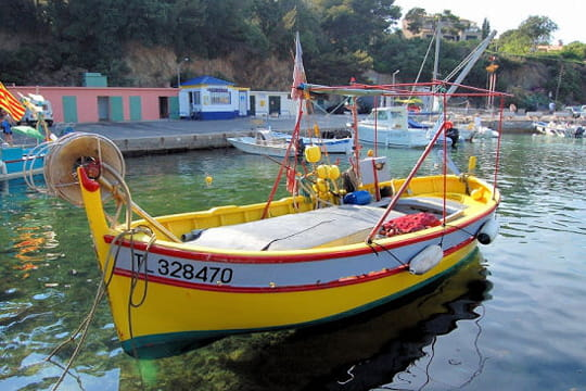 pointu tour du monde des bateaux traditionnels linternaute. Black Bedroom Furniture Sets. Home Design Ideas