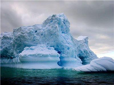 Des graines transportées par des visiteurs menacent l'écosystème antarctique