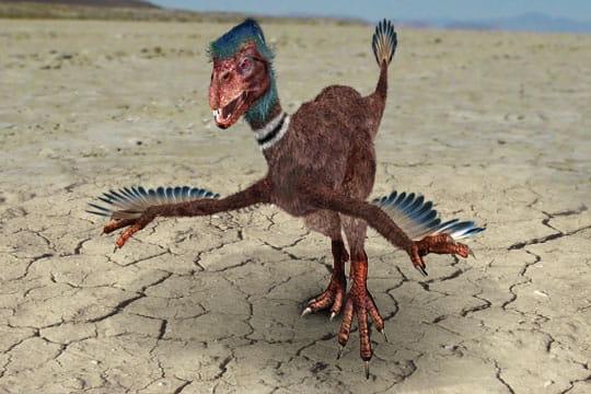 Revue des sciences 04 09 jean zin - Dinosaure marin carnivore ...