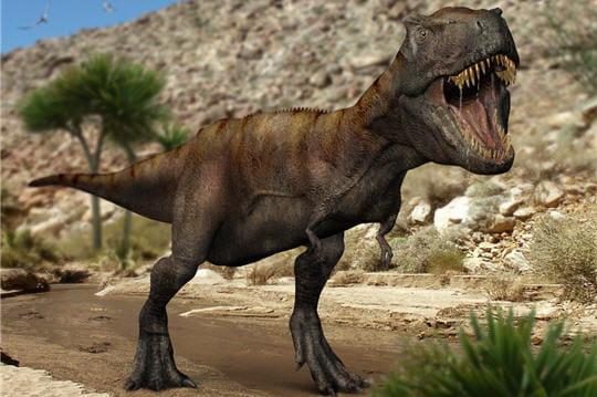 Le tyrannosaure
