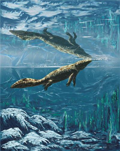 La Terre D Avant Les Dinosaures