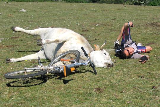 Le vtt c 39 est vache 40 clich s fous de sport linternaute - Dessin cycliste humoristique ...