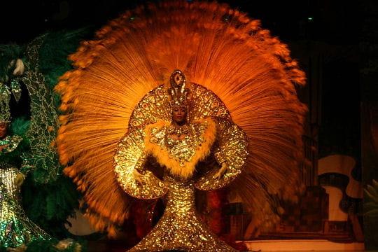 Carnaval de Rio ... Reine-carnaval-416210