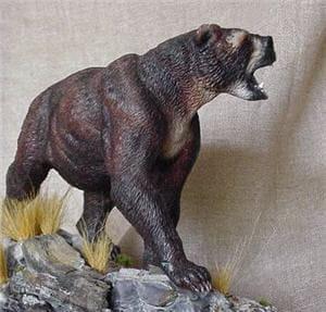 maquette de l'ours à face courte