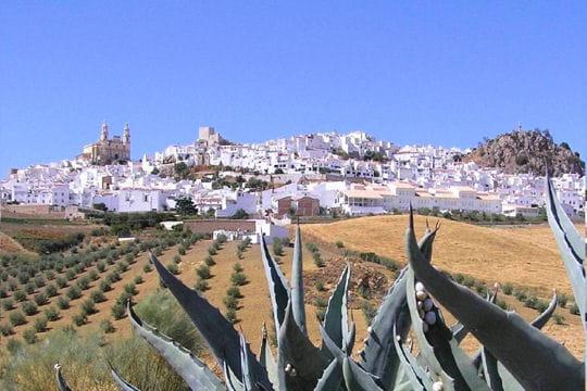 http://www.linternaute.com/voyage/europe/photo/villages-de-charme-en-europe/image/cadix-espagne-431665.jpg