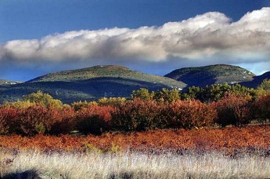 http://www.linternaute.com/nature-animaux/magazine/photo/tour-de-france-des-parcs-naturels-regionaux/image/parc-naturel-regional-luberon-439459.jpg