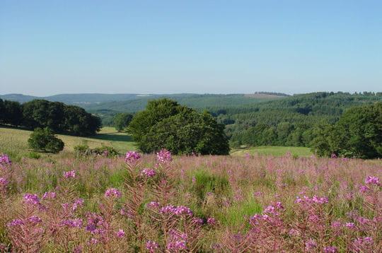Parc Naturel Régional de Millevaches - Limousin
