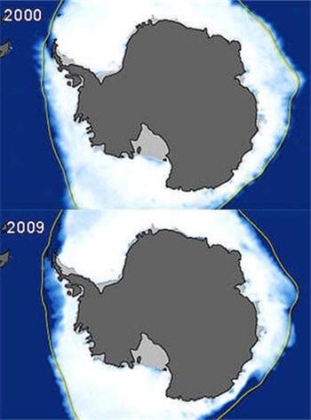 les scientifiques s'alarment de la fonte rapide des glaces de l'antarctique.