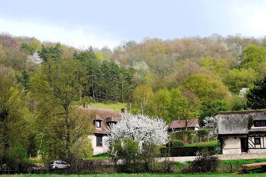 Normandie au printemps