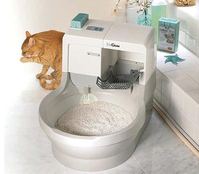 la liti re auto nettoyante equipez vos animaux des. Black Bedroom Furniture Sets. Home Design Ideas