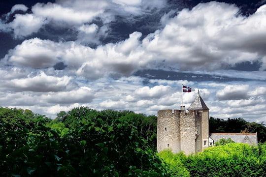 Châteaux .... - Page 2 Donjon-montbazon-504399