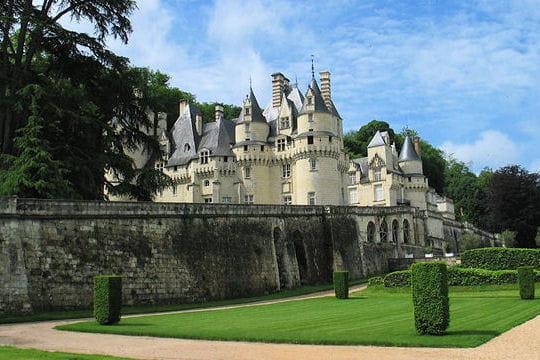 Châteaux .... - Page 2 Chateau-d-usse-504432