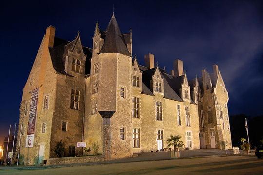 Châteaux .... - Page 2 Chateau-bauge-504443