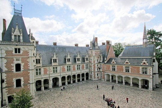 Châteaux .... - Page 2 Chateau-blois-504460
