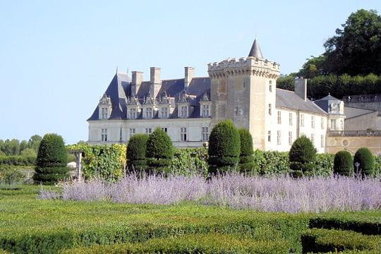 Châteaux .... Chateau-villandry-504545