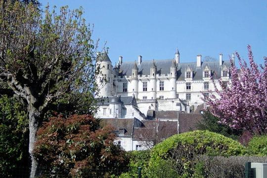 Châteaux .... Logis-royal-loches-504550