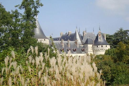 Châteaux .... Chateau-chaumont-sur-loire-504571