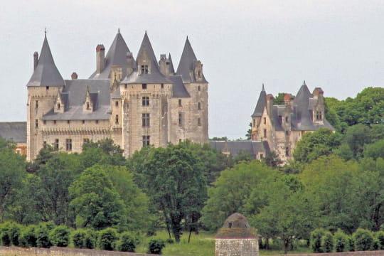 Châteaux .... Chateau-coudray-montpensier-504834