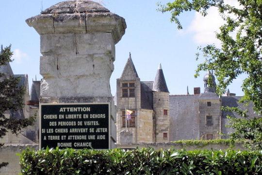 Châteaux .... Chateau-boumois-504878