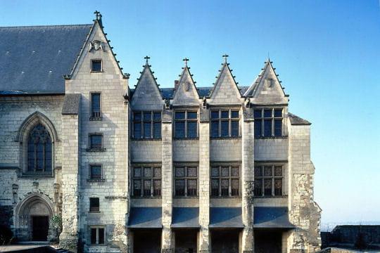 Châteaux .... Chateau-d-angers-504983